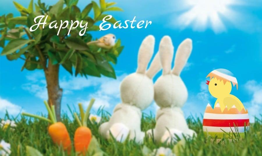 Photoshop Anleitung zum Ostern: Vektor-Postkarte