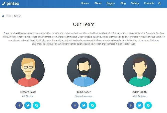 pintex-team-page