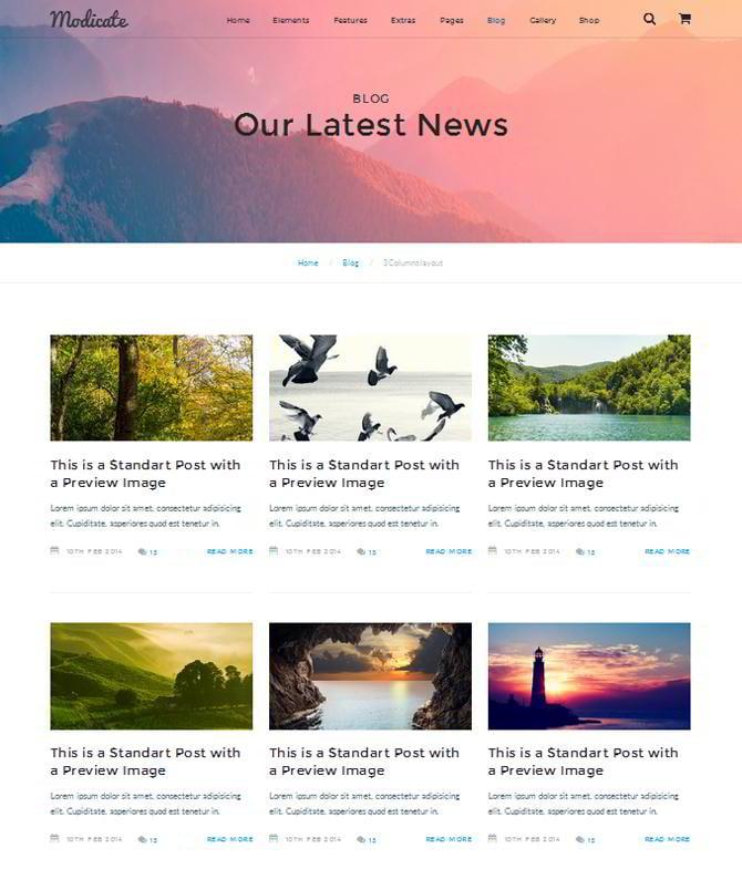 Modicate Blog Seite