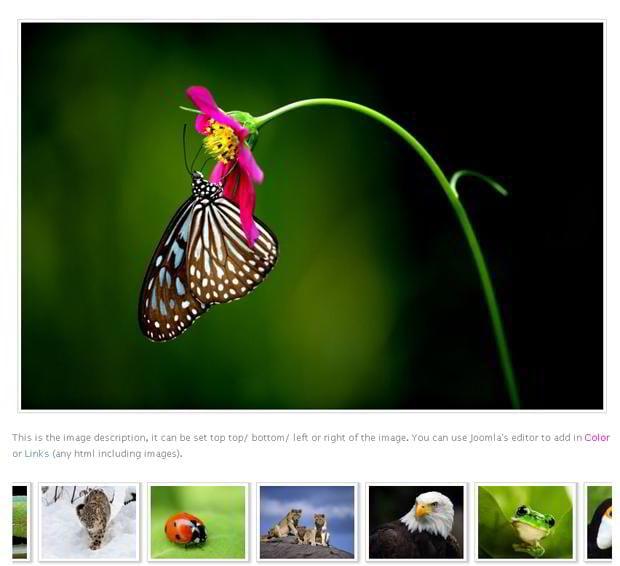 Ignite Gallery-gratis-galerie-erweiterung-fuer-joomla