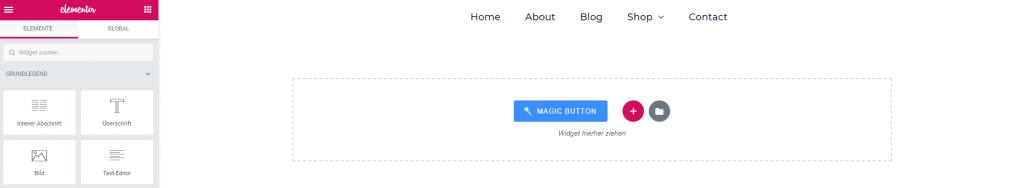 elementor dashboard magic button