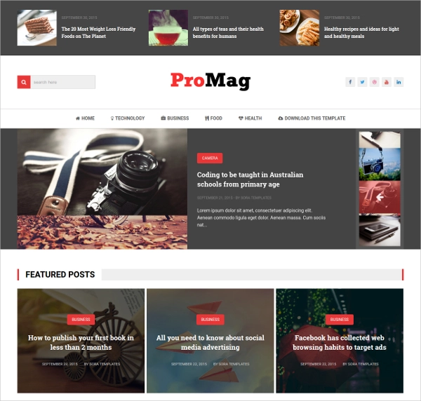 Blogger-Template-ProMag