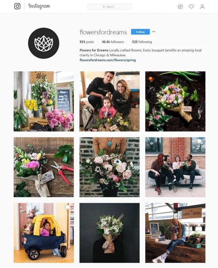 cuenta de instagram de flowersfordreams