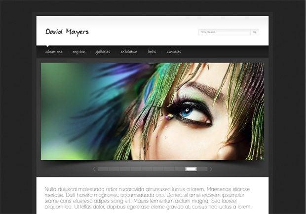 David Mayers WordPress шаблон