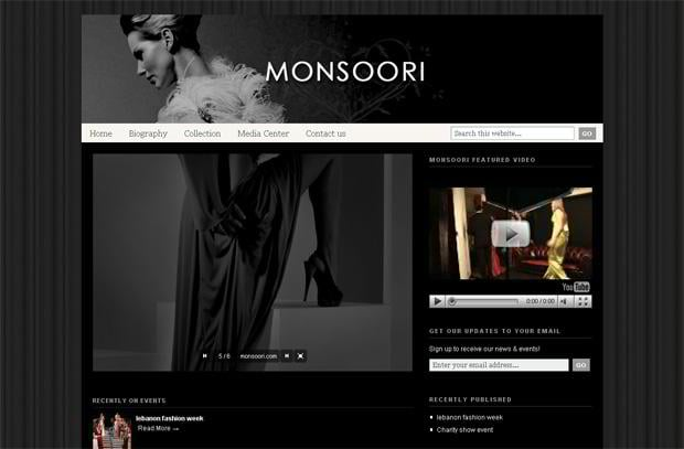 wordpress video blog web design - Monsoori.com