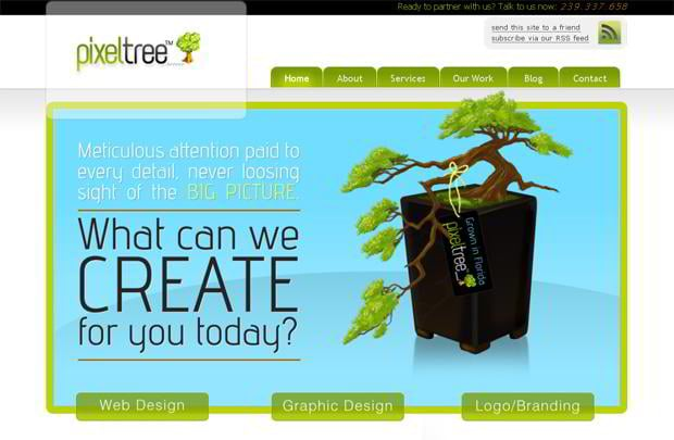 wordpress portfolio website design - Pixeltree.us