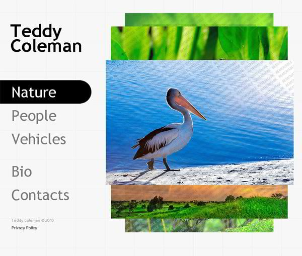 Teddy Coleman jQuery template