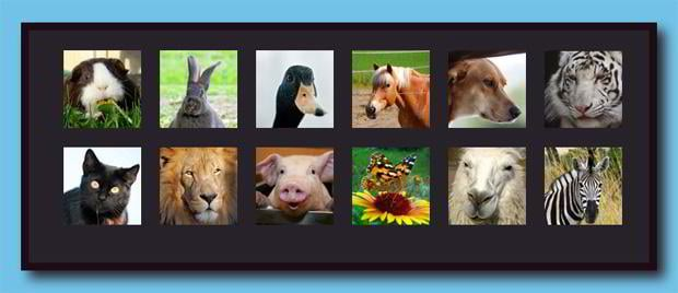 css3 and jquery photo gallery tutorials