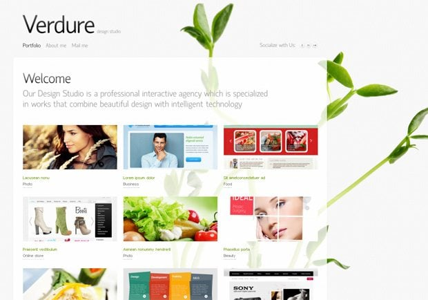 wordpress theme with jquery