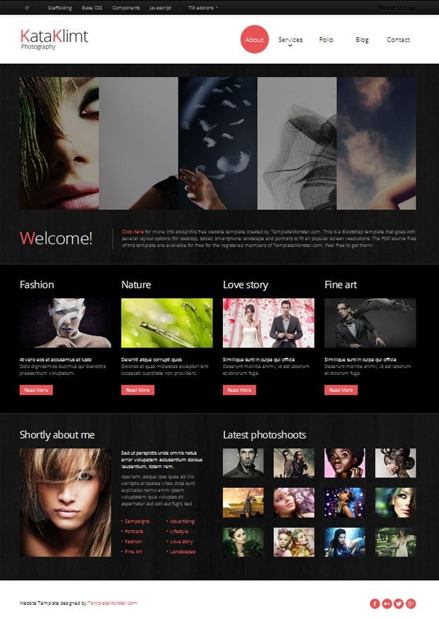 Free bootstrap responsive template for photography site for Free photography website templates