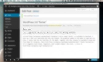 WordPress WYSIWYG Editor Customization