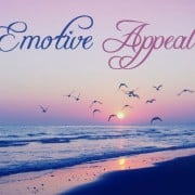Bringing Emotive Appeal to Your Website – What Does it Mean?