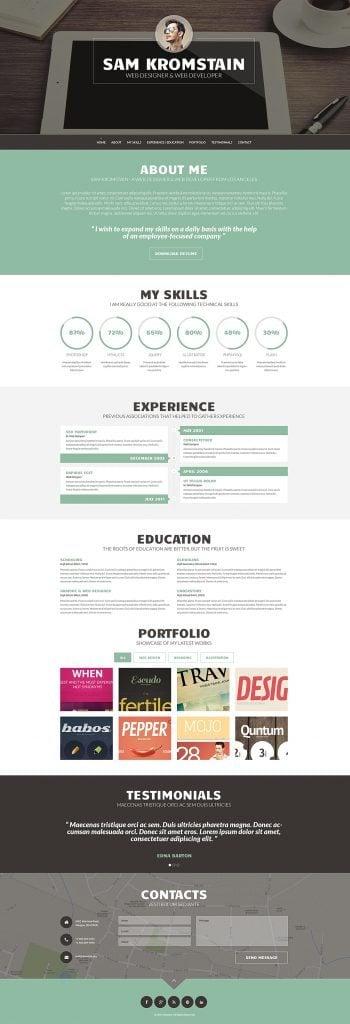 WordPress CV Themes