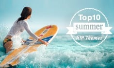 Top 10 WordPress Themes of Summer 2014