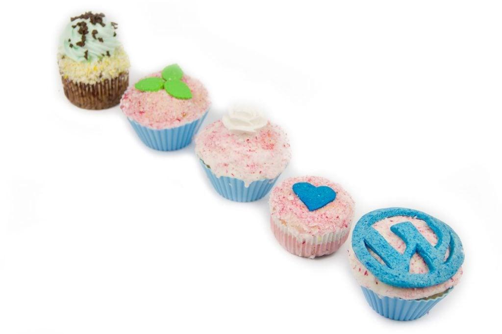 cms_cupcake_29