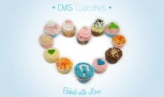 There's a Trick to Make Your Works Tasty – CMS Cupcakes Free Photos