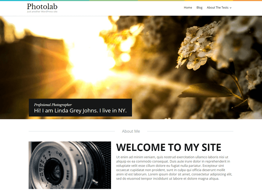 Photolab Free WordPress Theme - Smart Redesign for Your Blog