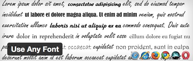 google-fonts-plugins