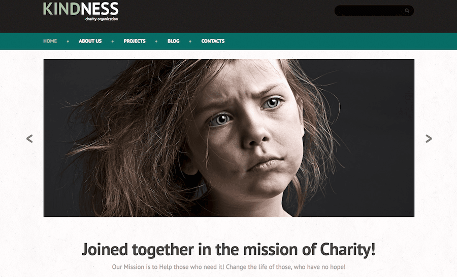 non-profit WordPress themes