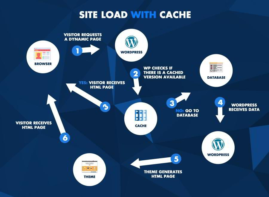 How-To-Speed-Up-Your-WordPress-Website-2-WithCache
