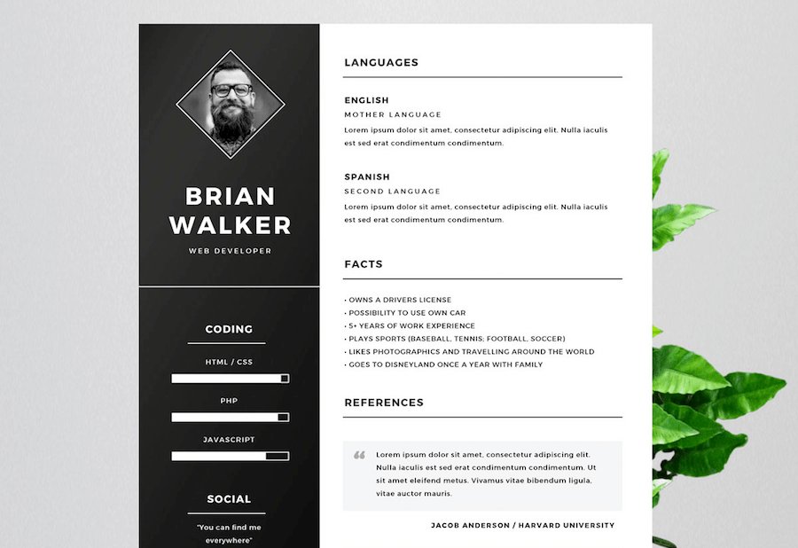 65 Free Resume Templates For Microsoft Word Best Of 2020