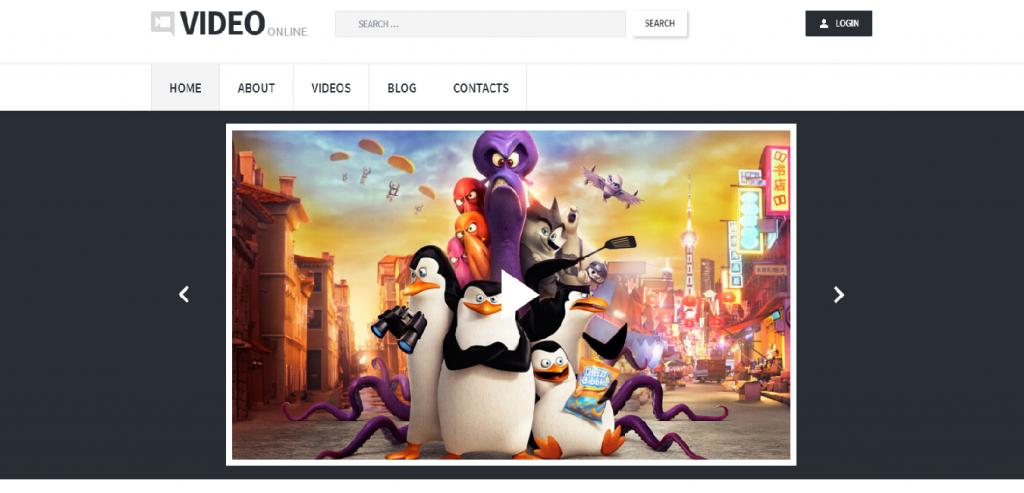 Vimeo Video Hosting WordPress Themes