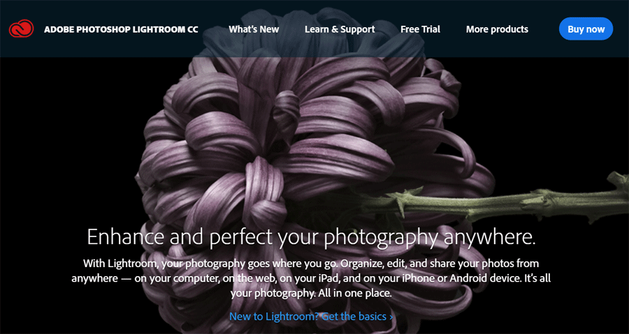 Top 5 Creative Adobe CC Apps for Web Designers