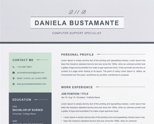 30 Jaw-Dropping Microsoft Word CV Templates Free And Premium