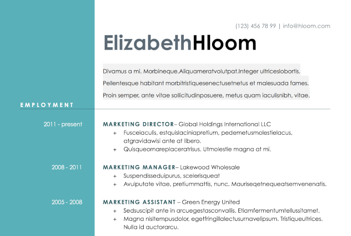 The Modern-Day Candidate CV Template