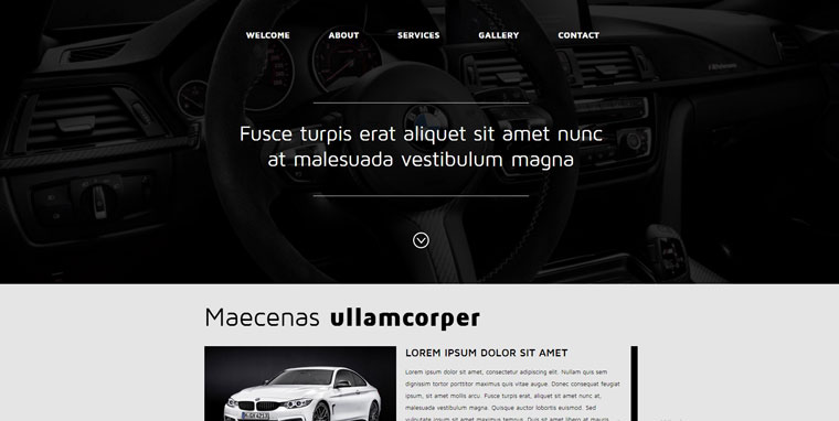 Muse Car Template.
