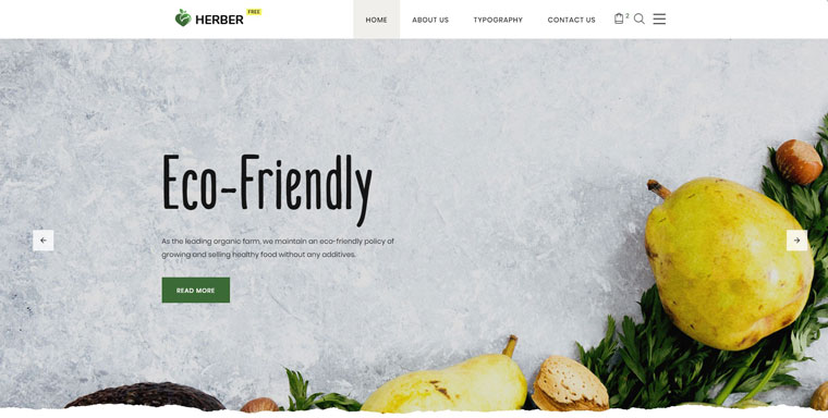 Free Website Template for Food Delivery Website Template.