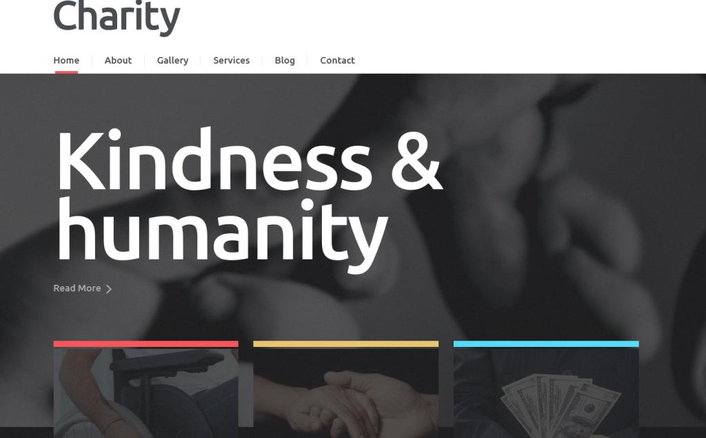 NGO Responsive WordPress Theme