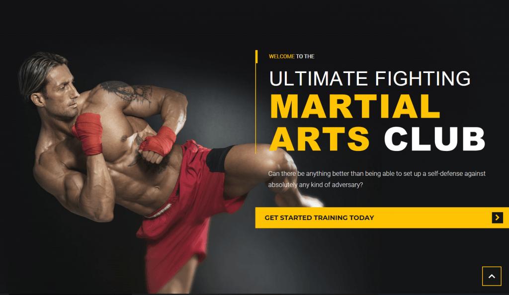 Martial Arts WordPress Theme