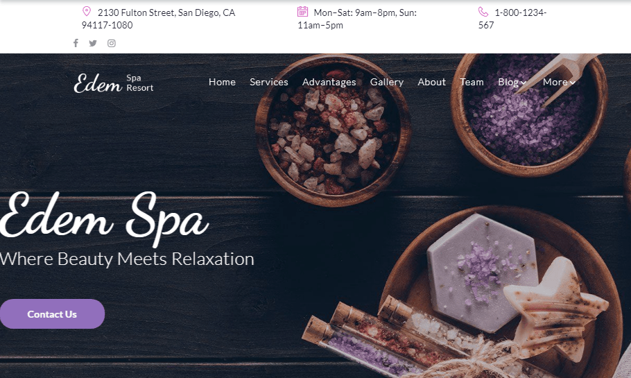 WordPress Salon Themes