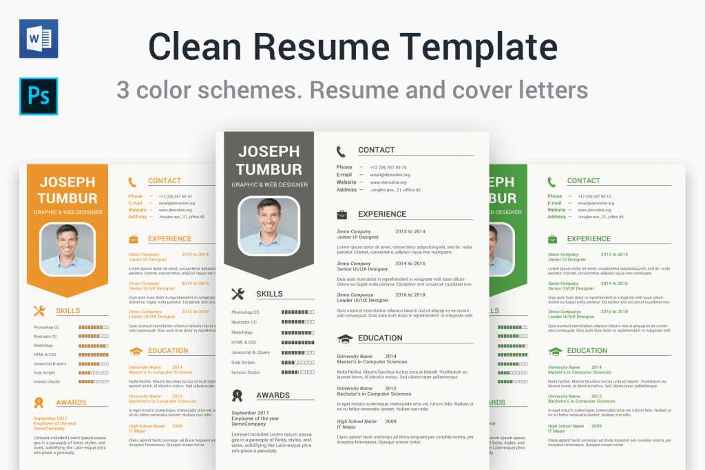 65 Professional CV Templates For MS Word That Look Like