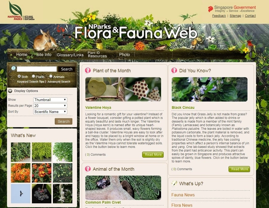 Flora and Fauna Web
