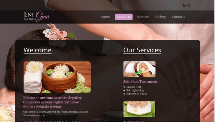 Free Spa Salon Web Template
