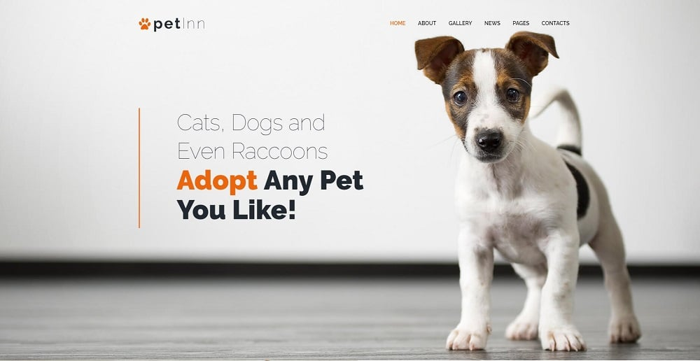 PetInn - Responsive Animals & Pets Charity WordPress Theme