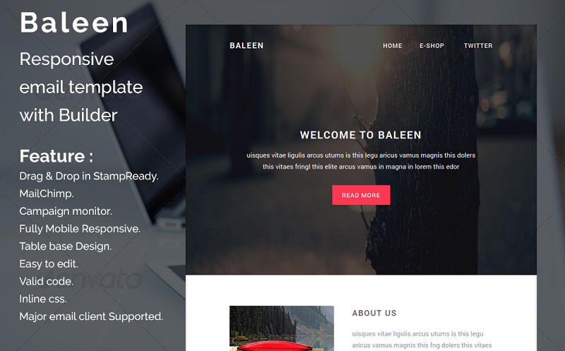 Baleen - Responsive email template Newsletter Template