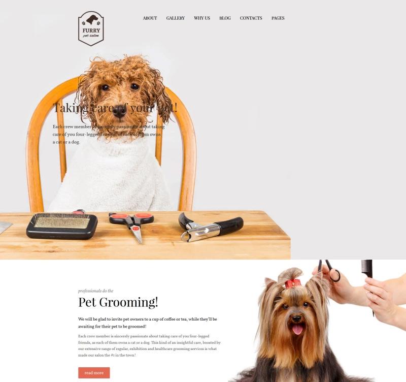Furry — Pet Grooming WordPress Theme