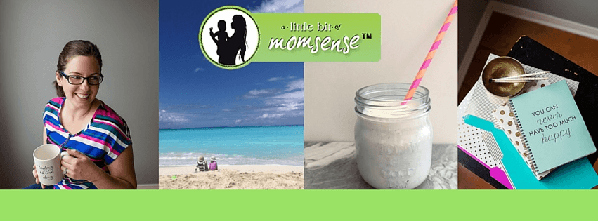 Popular Mom Blogs Of 2018 Built With WordPress