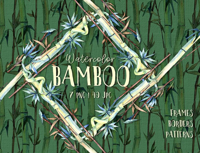 BAMBOO Watercolor png Illustration
