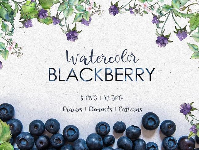 Blackberry Watercolor png Illustration