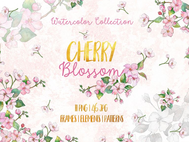 Cherry Blossoms Watercolor Png Illustration