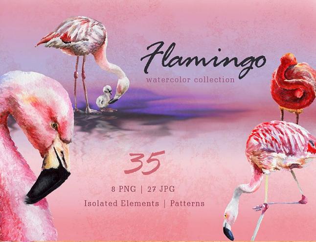 Flamingo Watercolor Png Illustration