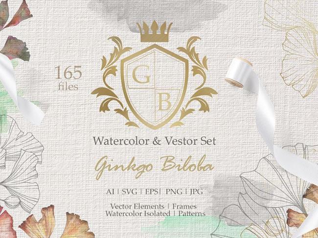 Ginkgo Biloba Watercolor and Vector Set Illustration