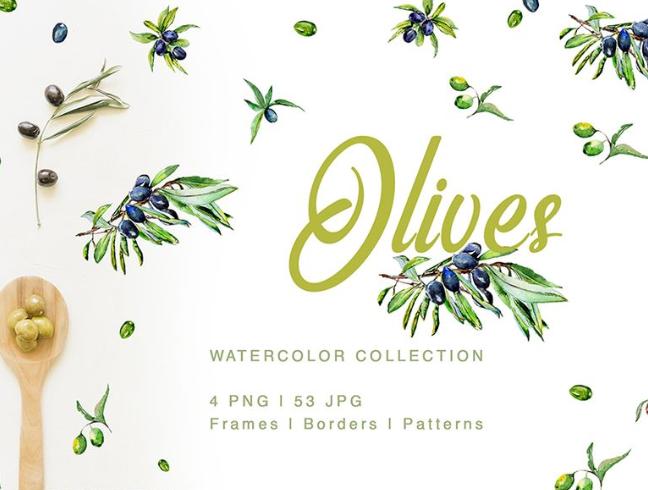 Green Olives Watercolor Png Illustration