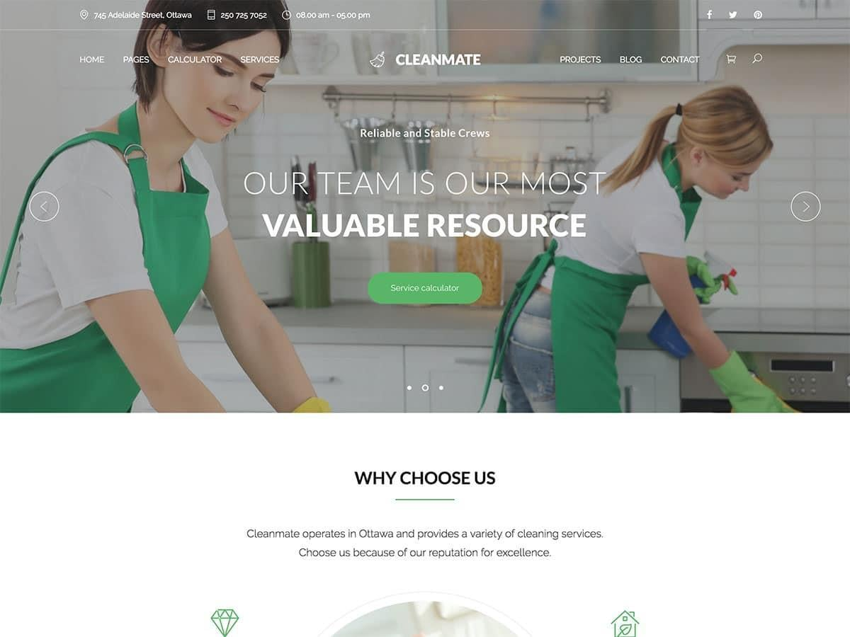 cleaning_business