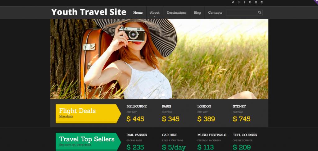 Travel Agency Responsive Website Template