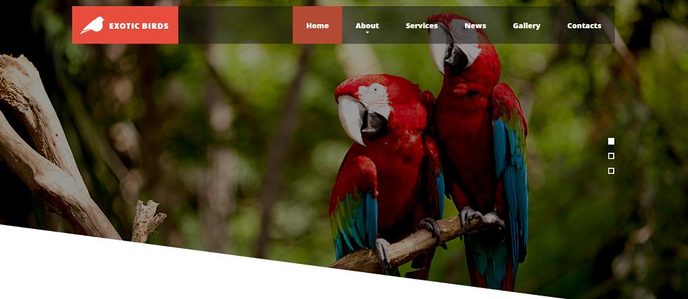 Exotic Birds Website Template